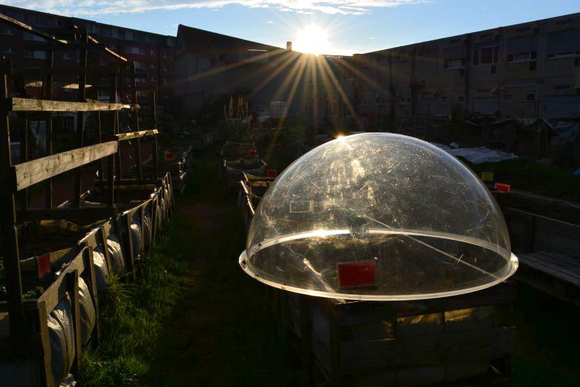 Gelandet: UFO-Gewächshaus im Garten.