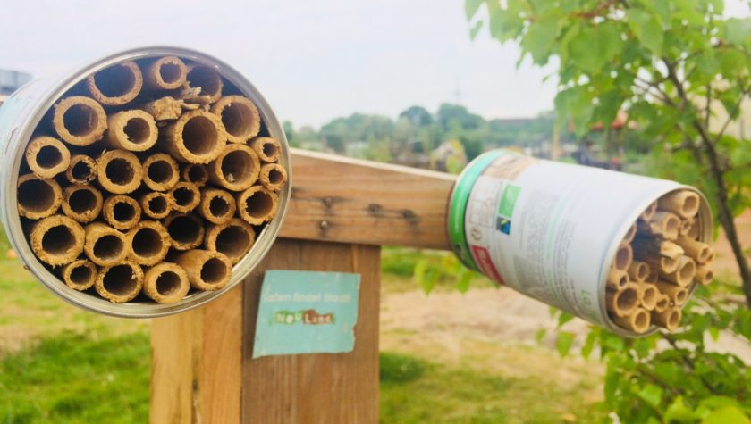 Insektenhotel einfach