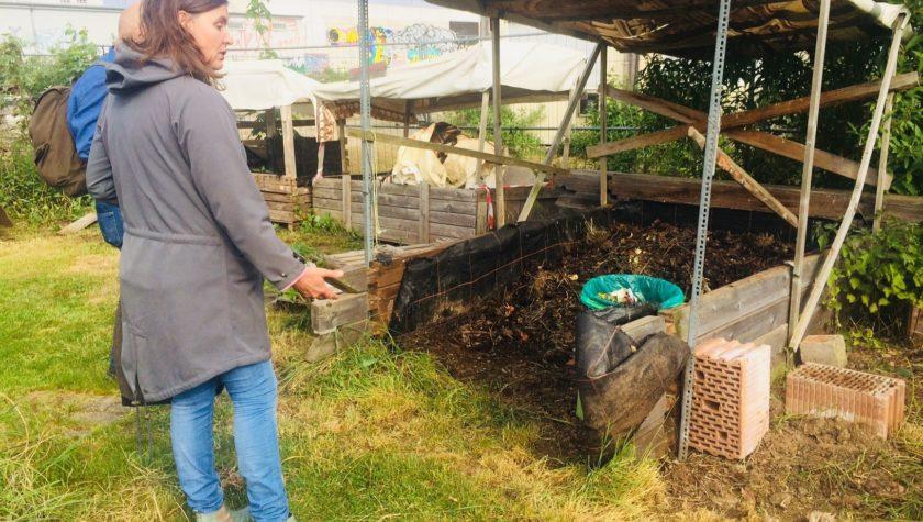 Kompost Urban Gardening